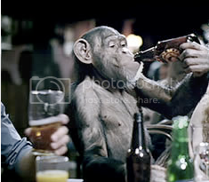 Drunk Monkey